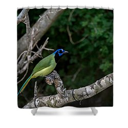 Green Jay Shower Curtain