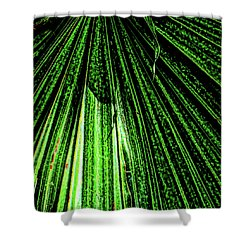 Green Leaf Forest Photo Shower Curtain by Gina O'Brien