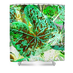 Shower Curtain featuring the photograph Green Leafmania 1 by Marianne Dow