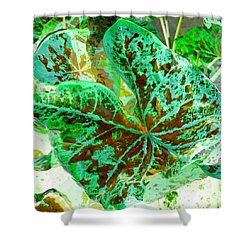 Shower Curtain featuring the photograph Green Leafmania 2 by Marianne Dow
