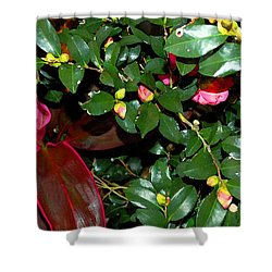 Green Leafs And Pink Flower Shower Curtain by Michael Thomas
