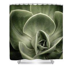 Shower Curtain featuring the photograph Green Leaves Abstract IIi by Marco Oliveira