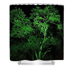 Green Magic Shower Curtain