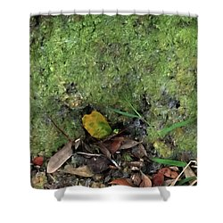 Green Man Spirit Photo Shower Curtain