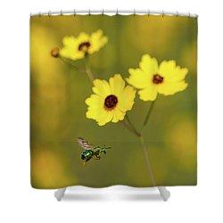Green Metallic Bee Shower Curtain by Paul Rebmann