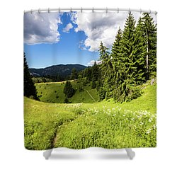 Green Mountain Shower Curtain by Evgeni Dinev