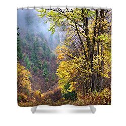 Green Mountain Fall Shower Curtain by John Poon