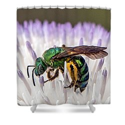 Green Orchid Bee Shower Curtain
