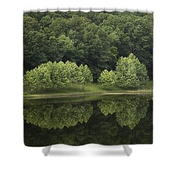 Green Reflections Shower Curtain by Andrea Silies