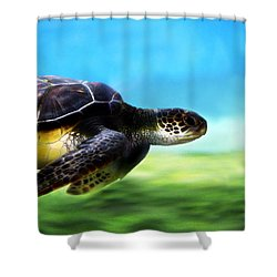 Green Sea Turtle 2 Shower Curtain by Marilyn Hunt