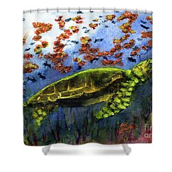 Green Sea Turtle Shower Curtain by Randy Sprout
