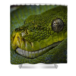 Green Snake Shower Curtain
