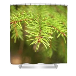 Green Spruce Branch Shower Curtain