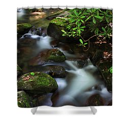 Green Stream Shower Curtain