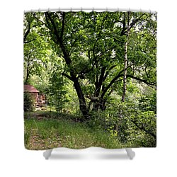 Green Summer Shower Curtain by Henryk Gorecki