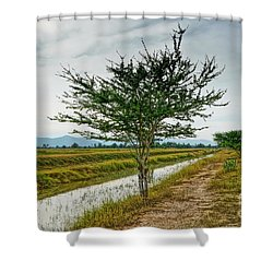 Green Tree Shower Curtain by Arik S Mintorogo