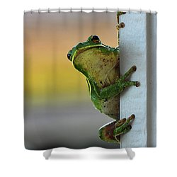 Green Tree Frog  It's Not Easy Being Green Shower Curtain