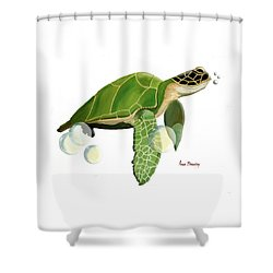 Green Turtle Shower Curtain by Anne Beverley-Stamps