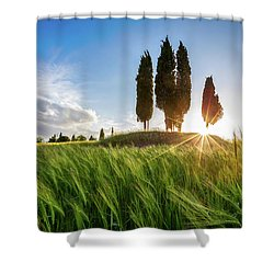 Green Tuscany Shower Curtain by Evgeni Dinev