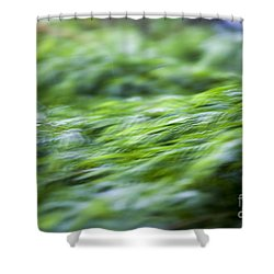 Green Waterfall 1 Shower Curtain by Serene Maisey