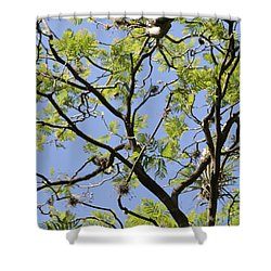 Greenery Center Panel Shower Curtain