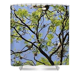 Greenery Center Panel Shower Curtain