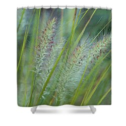 Greensleeves Shower Curtain