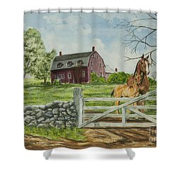 Greeting At The Gate Shower Curtain by Charlotte Blanchard