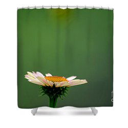 Greeting Spring Shower Curtain