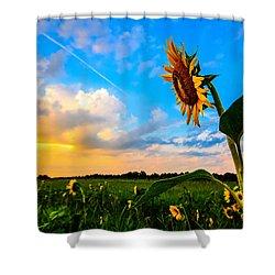 Greeting The Dawn  Shower Curtain