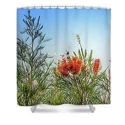 Grevillea With Moon Shower Curtain