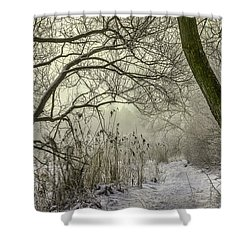 Shower Curtain featuring the photograph Grey Day #h1 by Leif Sohlman