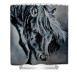 Grey Horse Shower Curtain by Maris Sherwood