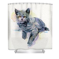 Grey Kitten Shower Curtain