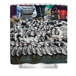 Shower Curtain featuring the photograph Grey Mullet Fish For Sale At The Fish Market by Yali Shi