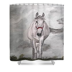 Grey On Grey Shower Curtain by Carole Robins