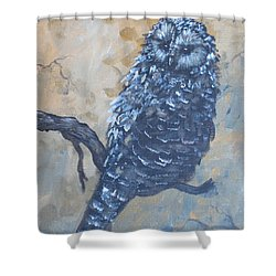 Grey Owl1 Shower Curtain