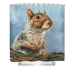 Shower Curtain featuring the painting Grey Squirrel by David Stribbling