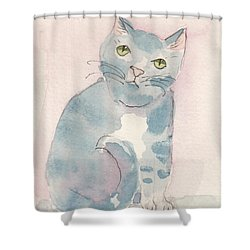 Shower Curtain featuring the painting Grey Tabby by Terry Taylor