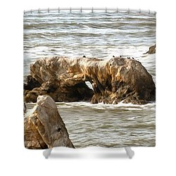 Shower Curtain featuring the photograph Grey Water At Window Rock by Barbara Snyder