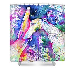 Greyhound Trance Shower Curtain by Zaira Dzhaubaeva