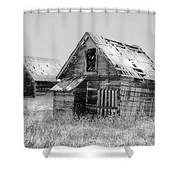 Grizzled Acres In Black And White Shower Curtain by Kandy Hurley