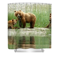 Shower Curtain featuring the photograph Grizzly Bear Family  by Myrna Bradshaw
