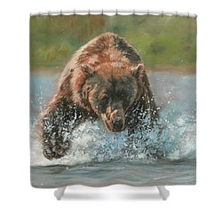 Shower Curtain featuring the painting Grizzly Charge by David Stribbling