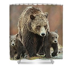 Grizzly Family Shower Curtain