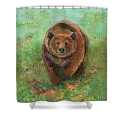 Grizzly In The Meadow Shower Curtain