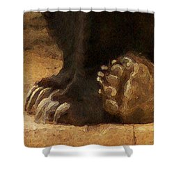 Grizzly Paws Shower Curtain