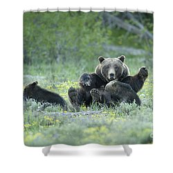 Grizzly Romp - Grand Teton Shower Curtain