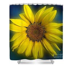 Groovy Sunflower Shower Curtain