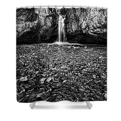 Grotto Falls In Black And White Shower Curtain